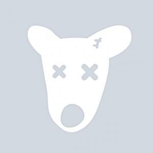 Взлом страниц Вконтакте – как обезопасить свой аккаунт
