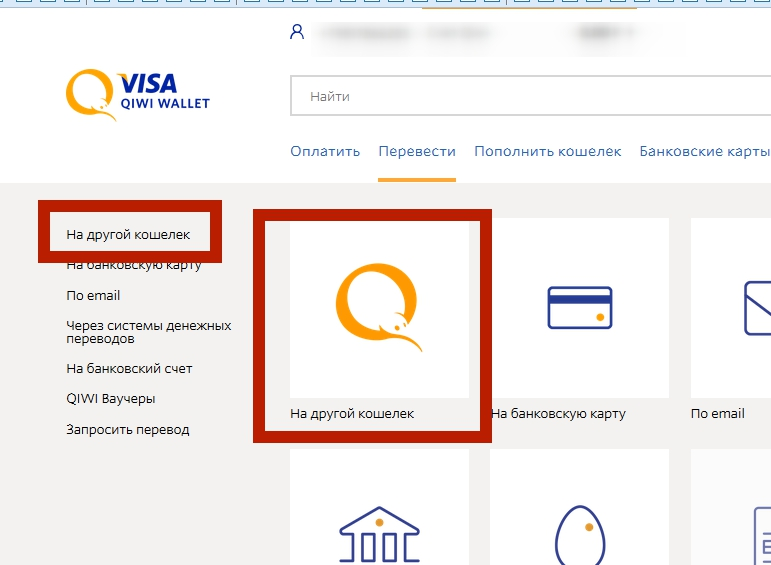 Visa QIWI Wallet 19