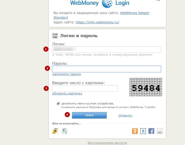 WebMoney-07
